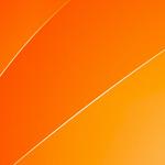 Kinnitus erukolonel Breiveli murele