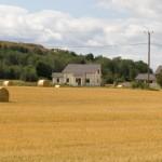 Pauliku külasse kavandatakse uut elamurajooni