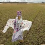 Talunikud peavad hane- ja lagleparvedega tulutut võitlust