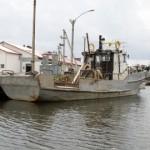Peipsi kalakuningas nõuab Lohusuu vallalt vana võlga sisse