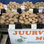 Kaupmehed ennustavad kartuli kallinemist