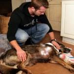 Hunt pures Illuka taluõuel koera vaeseomaks