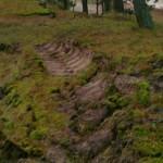 RMK metsaraie pahandab Kauksi külaseltsi
