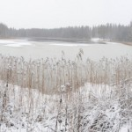 Kurtna järvede äärde autoga sõita ei tohiks