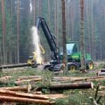 Viis metsnikku jääb märtsis tööta
