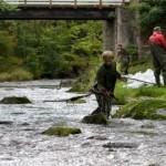 Pühajõe Forell muretseb maakonna veekogude pärast