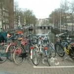 Amsterdam – ratturite kuningriik