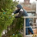 Narva ametnikud otsustasid jõulukuuse pealt kokku hoida