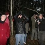 Tärivere mägi võib metsast lagedaks jääda