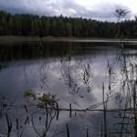 Kurtna järvede veetase aina langeb