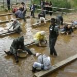 Ida-Virumaal läheb kullapesuks