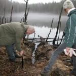 Riik asub päästma Kurtna järvi