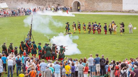 Lõbus Narva lahingu rekonstruktsioon 311 aastat pärast tõelist Narva lahingut. Narva Preobraženski polgu liikmed tunnevad puudust vaid hobustest: kohalikud suksud kardavad tulistamist, väljaõpetatud hobuseid Peterburist ei saa aga üle piiri tuua.
