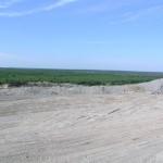 Tööstusmaastik vaesestab… ja rikastab keskkonda