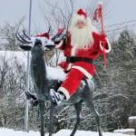 Jõuluvanad ronivad puu otsa nõu pidama