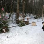 Kohtla-Järve linnavalitsus otsib metsaparki kaunistanud entusiasti