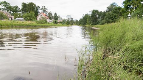 Riskita lahendusi Purtse jõe puhastamiseks pole seni pakkuda; tarkust loodetakse lisanduvat väiksemate jõgede puhastamisega saadavatest kogemustest.