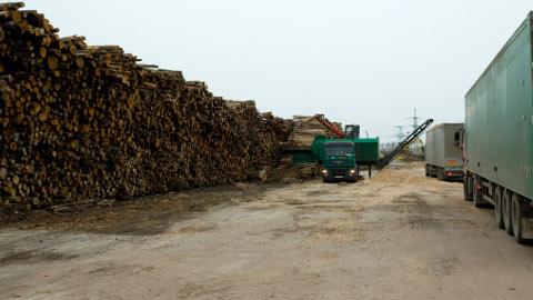 2009. aasta sügisel kõrgusid-laiusid Balti elektrijaama territooriumil hakkpuiduks tegemist ootavad puuhunnikud; metsaomanikud loodavad, et see neile hea aeg tuleb taas.