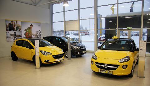 Tavapärase Škoda või Honda pildi asemel, mida võiks väga vabalt ka seekord kasutada, valisime artiklit illustreerima üllatuspronksi Opeli. Seda enam, et erkkollased autod autosalongis on noortepärased ja ka fotogeenilised.
