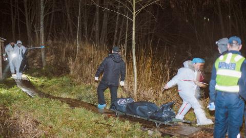 Politsei ja eksperdid tegid möödunud aasta 9. detsembril Darja surnukeha leidmise paigas − Pähklimäe terviseraja läheduses − põhjalikku tööd. Uurijad jõudsid järeldusele, et tüdruk oli sinna läinud mitu päeva varem vabatahtlikult ning tundis oletatavat tapjat.