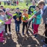 Illukal pandi mulda Eesti juubelikõrvitsad