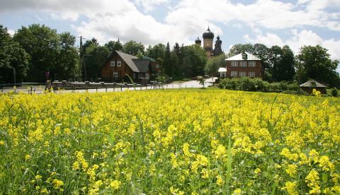 Illuka valla tegelik keskus on Kuremäe, kuhu vald on plaaninud suurejoonelist arenguprojekti.