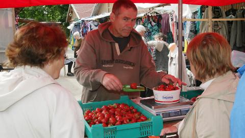 Illar Schneider müüs viimase maasikakasti tühjaks juba enne keskpäeva.