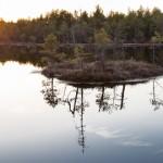 Estonia kaevandus liigub kaitsealuste rabade suunas
