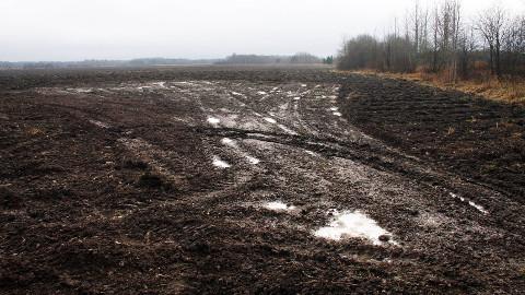 Kolm aastat ja kaks kuud Peeri küla põllul haigutanud šurfiauk täideti killustikuga, valati peale betoonplaat ja kaeti see pinnasekihiga.