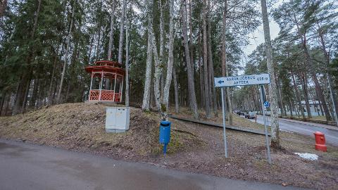 Narva-Jõesuus Aia ja Mere tänava ristmikul asuv linnale kuuluv maatükk: siinsete kuuskede ja mändide vahele võib paari lähiaasta jooksul kerkida spordihall. Sealsamas naabruses on Narva-Jõesuu spaa ja sanatoorium, kahesaja meetri kaugusel aga paikneb linna liivarand ja loksuvad Soome lahe lained.